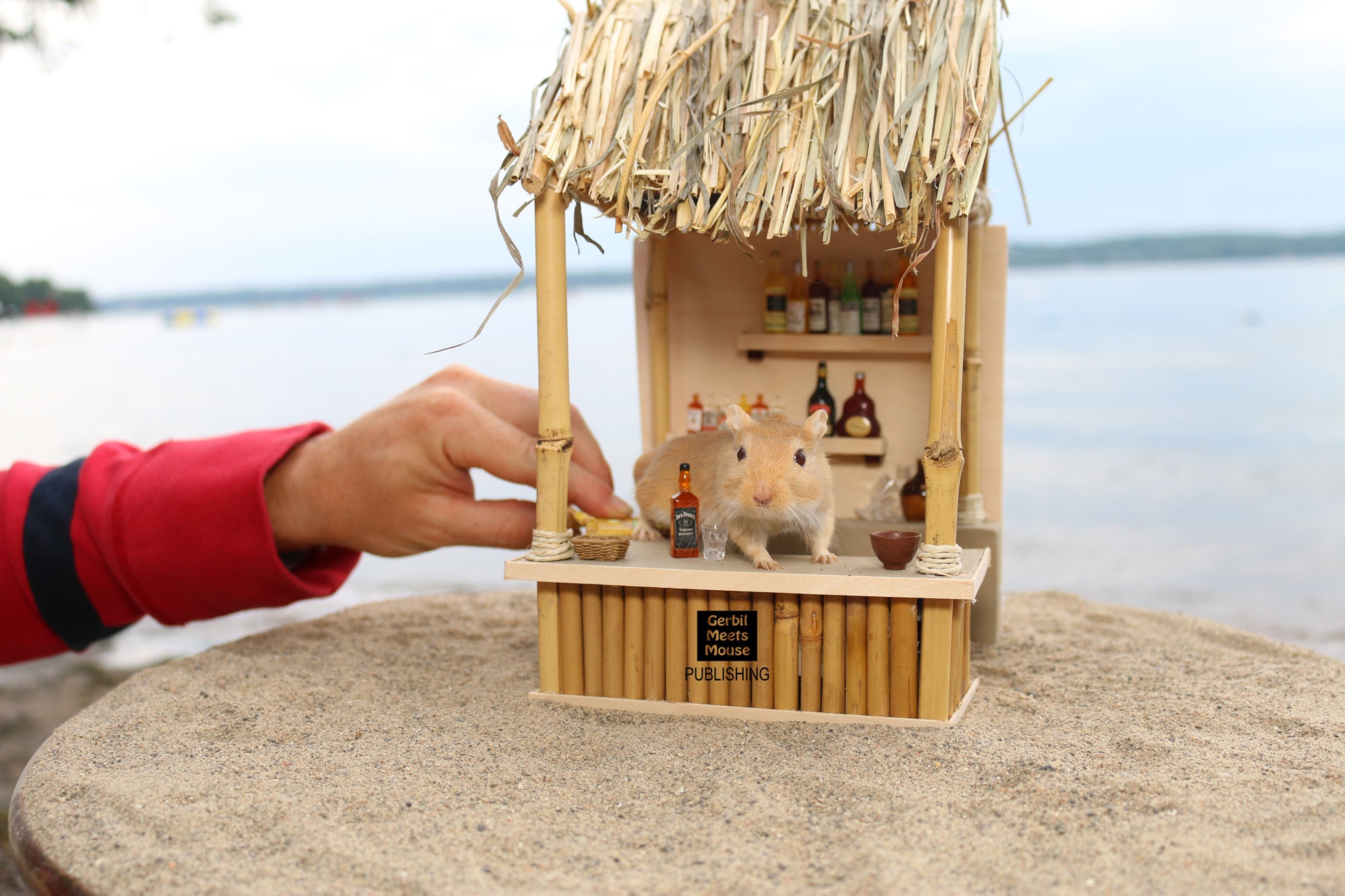 Astonishing Behind The Scenes Melvins Tiki Bar Gerbil Meets Mouse Download Free Architecture Designs Osuribritishbridgeorg
