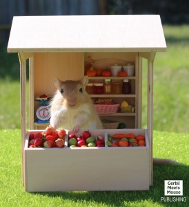 Melvin-Fruit-Stand-3